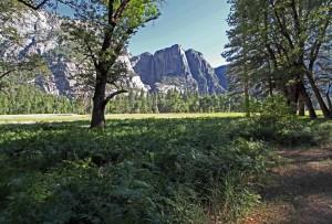 Lauren_ConVivio_Yosemite_mtns